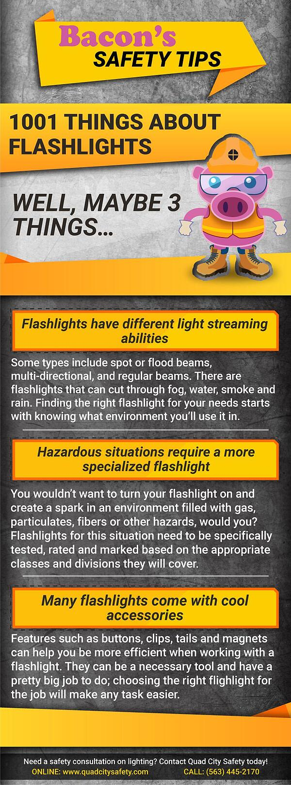 Bacon's Safety Tips 1001 Things About Flashlights