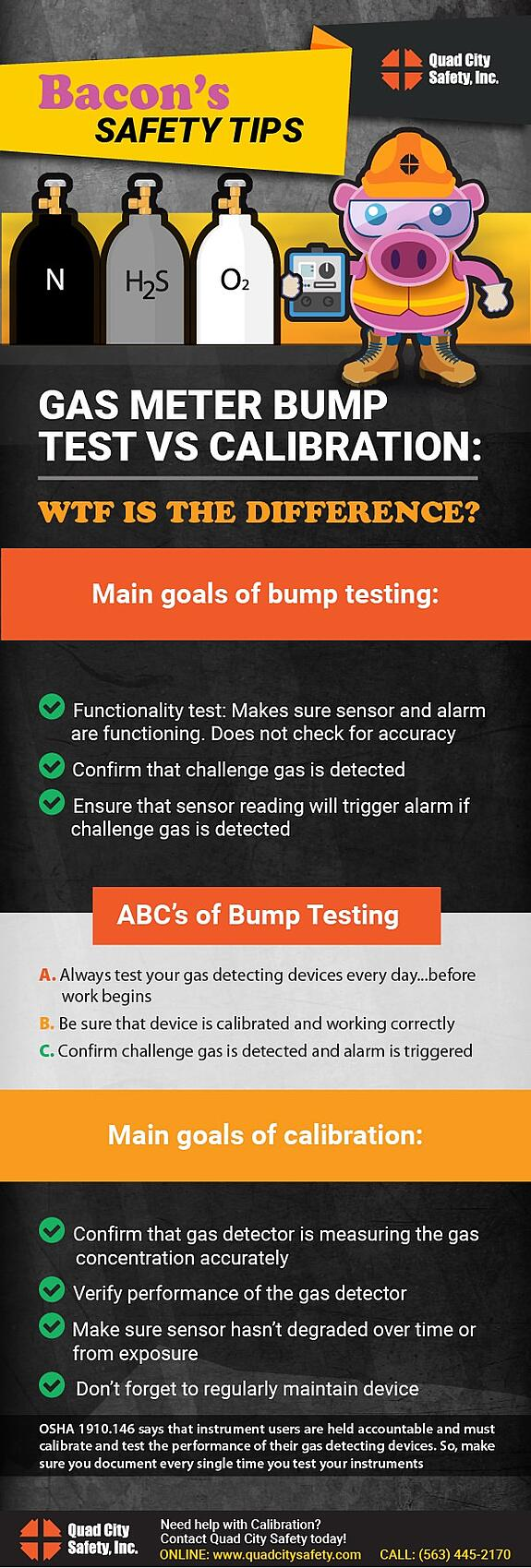 Bacon's Safety Tips Gas Meter Bump Test vs Calibration. WTF is the difference?
